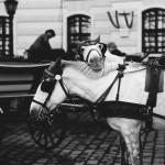 simon_fotograf_street_16