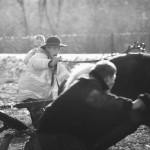 zawody-furmanów-milówka-030